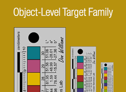 Object Level Target